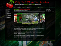 Seattle Webdesign - Digital Cherries Studio